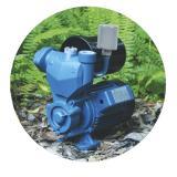 Водяная автономная станция \ 4Water  FDB-35 AUTO 230В\50Гц  370Вт 38л\мин, 38м бак 2л